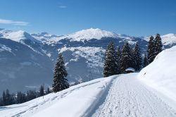winterwanderweg3