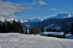 winterwanderweg4