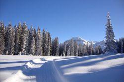 winterwanderweg6